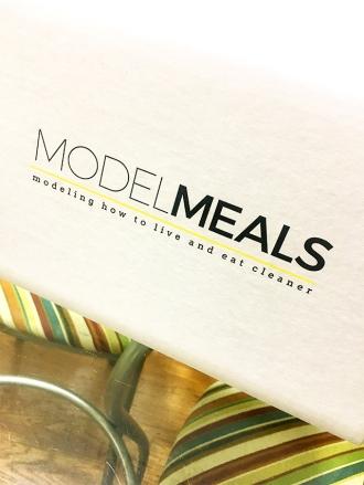 ModelMeals-DandyEats-Box