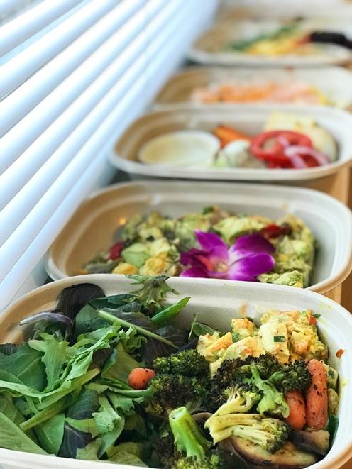 ModelMeals-DandyEats-Healthy-Food
